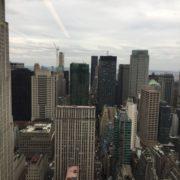Vue depuis la bib W&C, NYC